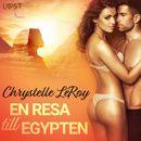 En resa till Egypten - erotisk novell
