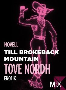 Till Brokeback Mountain